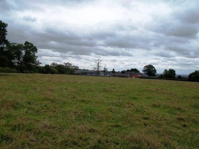 Farmland by Marston Lodge
