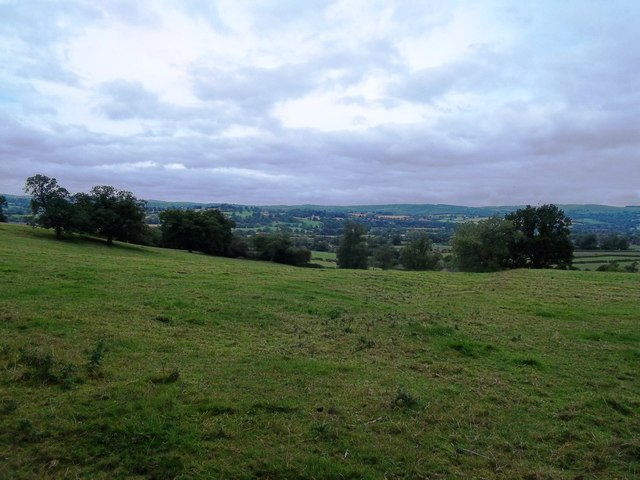Grazing Land near The Shawleys