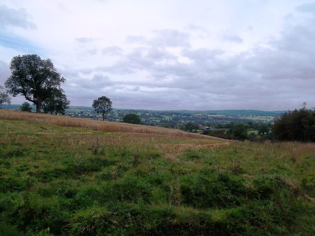 Crop Field near Hurd's Barn