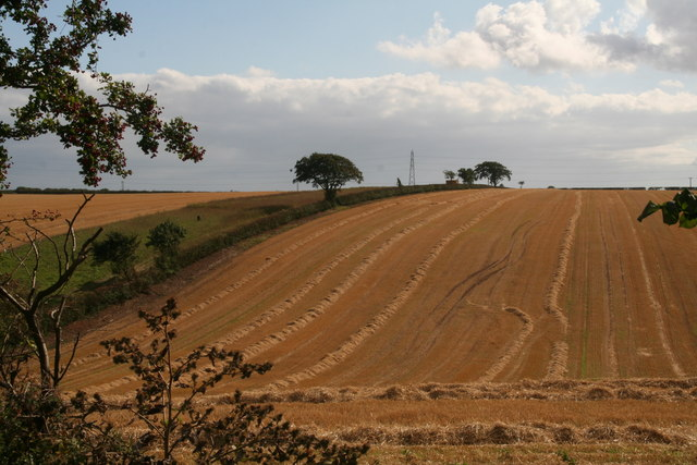 Stubble field next to the bridleway to Cuxwold