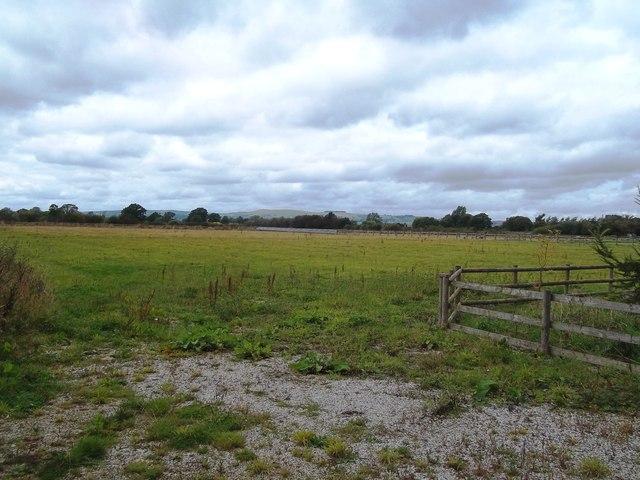 Field near Park View