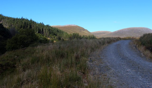 Track leading up Allt nan Albannach to Gobernuisgach
