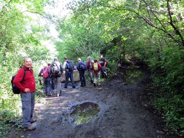 Cyffordd o lwybrau / Junction of paths
