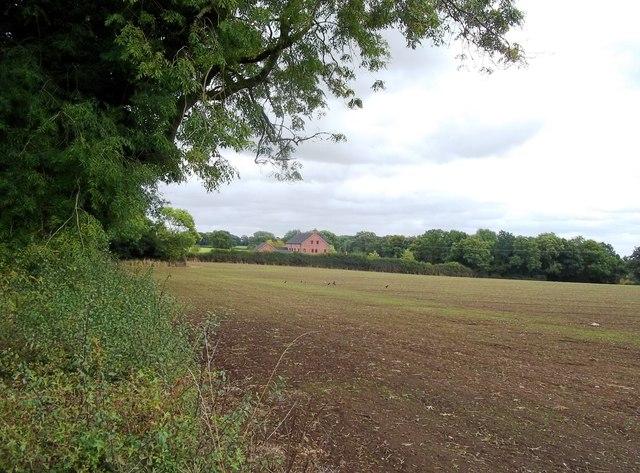 Field off Cockshead Lane