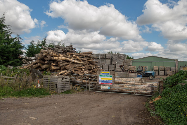 Yard with Logs