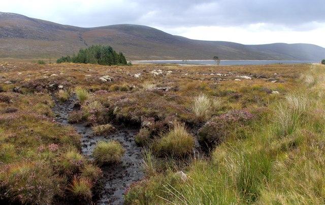 Blanket bog on the banks of Loch Glascarnoch
