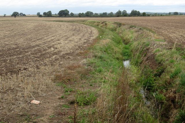 Stream in field by Shelford Lane