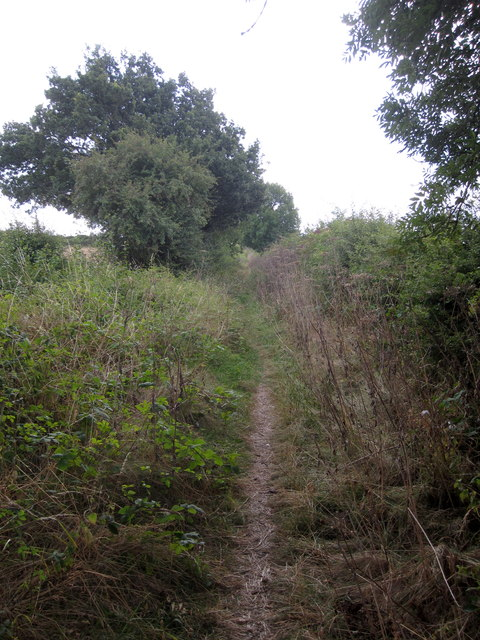 Path to Willesley Wood