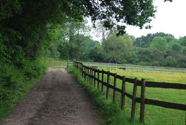 Bridleway to Hammerwood