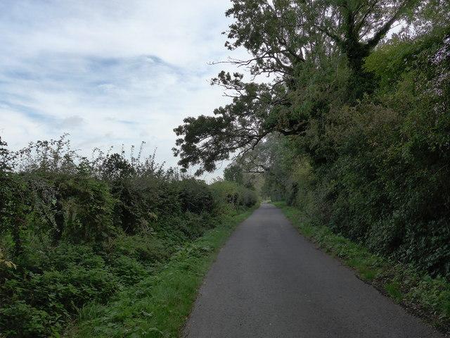 South Downs Way, Exton to Buriton (7)