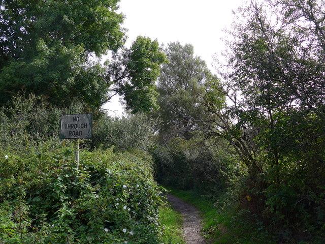 South Downs Way, Exton to Buriton (10)