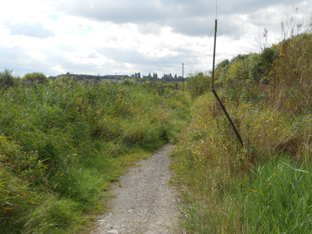 Footpath on Swanscombe Marshes (1)