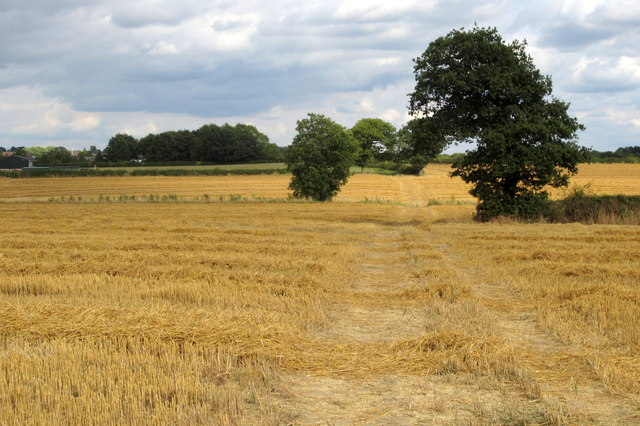 Ivanhoe Way by Shellbrook Farm
