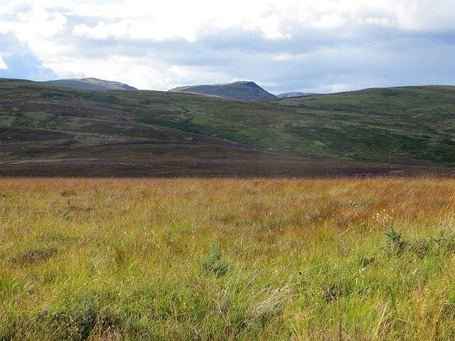 Moorland, Murray's Hill