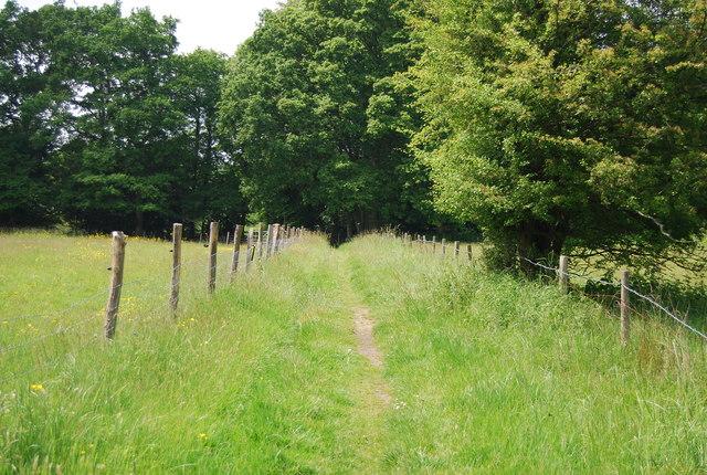 Footpath to Homestall