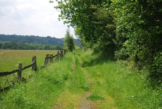 Footpath to Homestall Stud