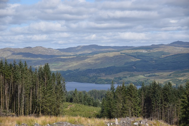 Loch Awe from Inverliever Forest