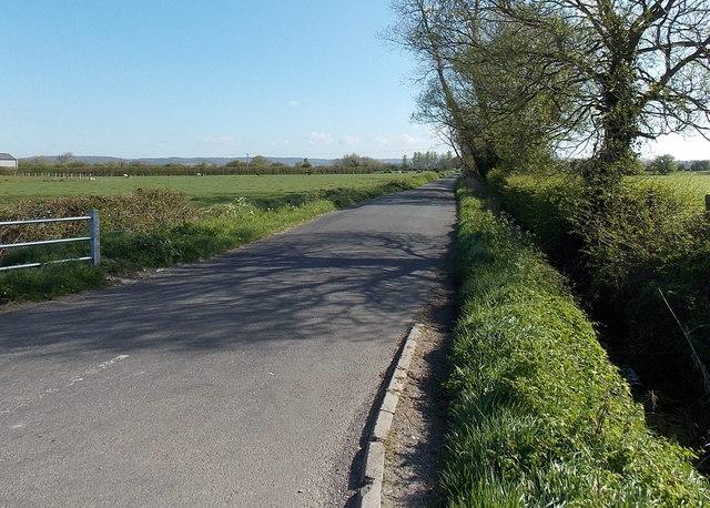 Claverham Drove north of Yatton
