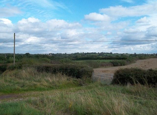 Farmland near Shirley Brook