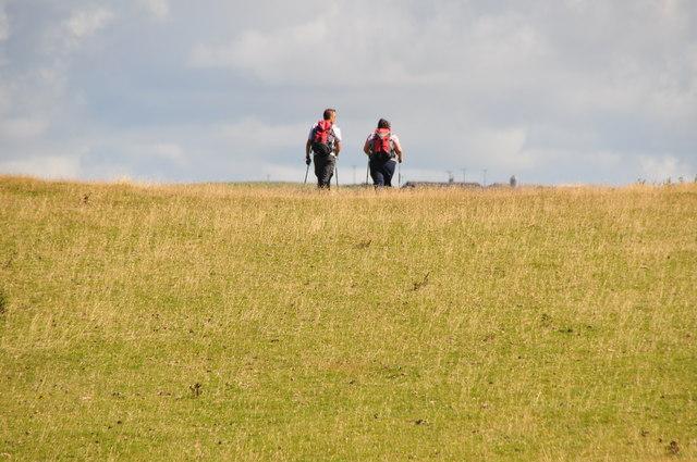 North Devon : Grassy Field & Walkers