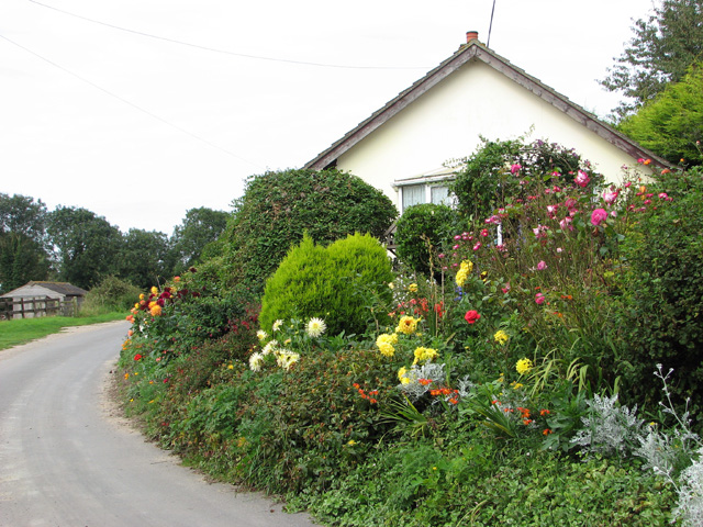 Flowerbeds beside Church Road
