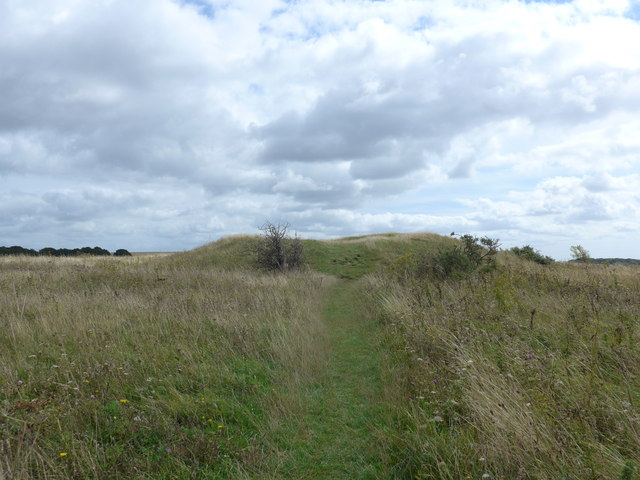 South Downs Way, Exton to Buriton (44)