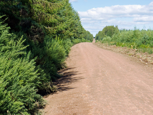 The Military Road across Millbuie