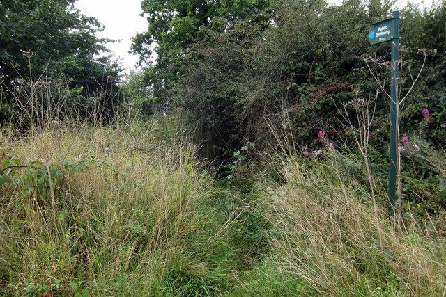 Footpath to Swepstone