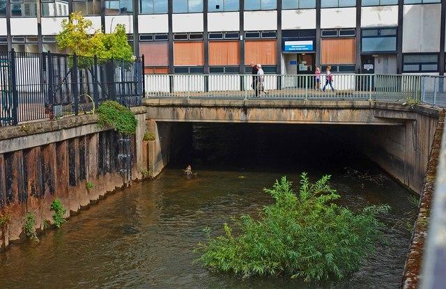 River Stour near Crown House, Kidderminster
