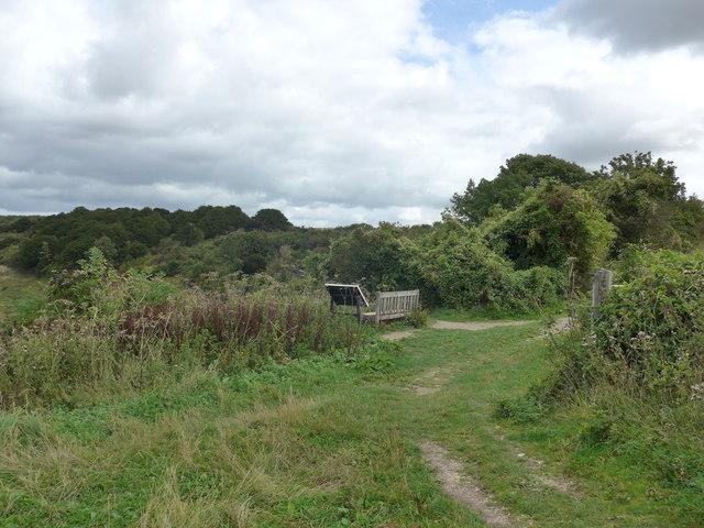 South Downs Way, Exton to Buriton (49)