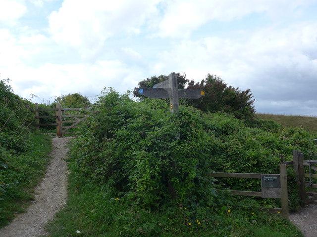 South Downs Way, Exton to Buriton (51)