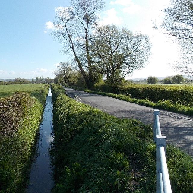 Rhyne alongside Claverham Drove north of Yatton