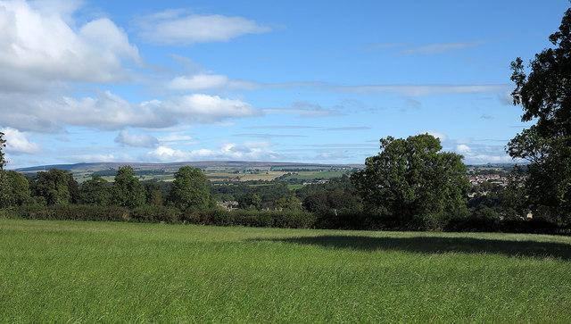Field south of Startforth