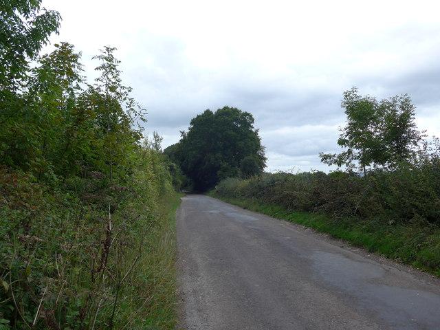 South Downs Way, Exton to Buriton (65)