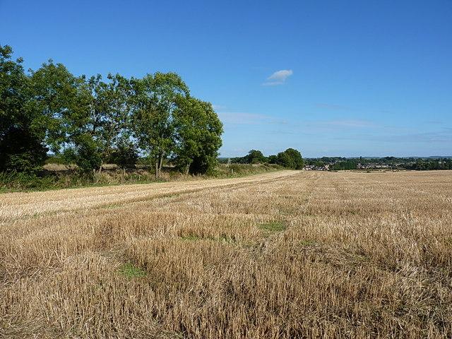 Field of stubble near Castle Farm