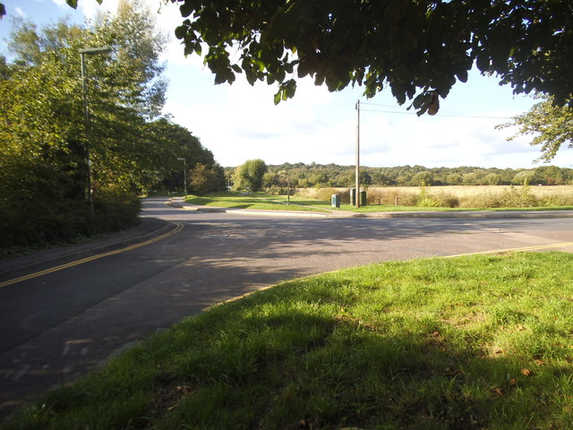 Ashtead Common from Woodfield Road