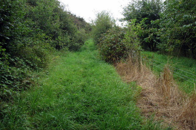 Footpath by the railway line