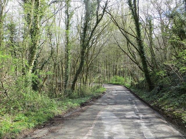 Yellow road near Rays Bridge