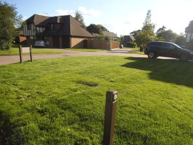 Rye Field, Ashtead