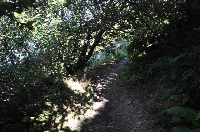 North Devon : Torrs Walk