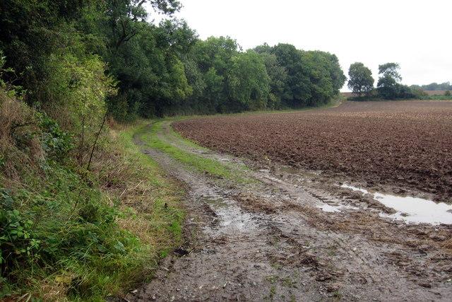 Path to Alton Grange by Ross Knob Plantation