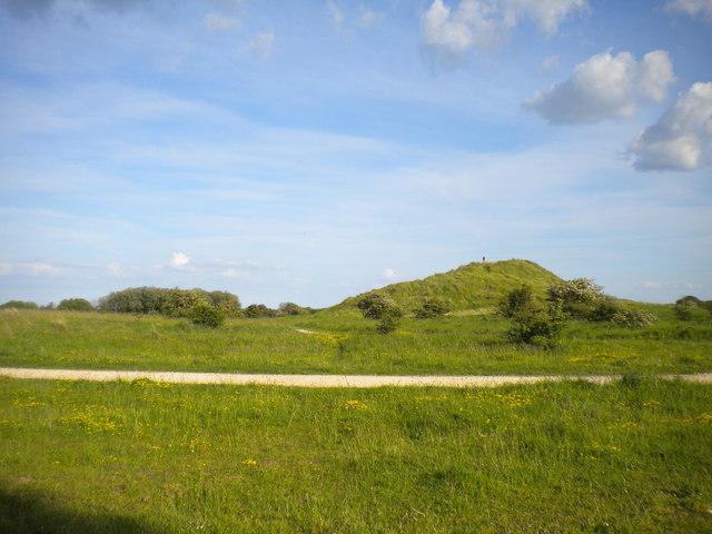 Dunes near Saltfleetby (1)