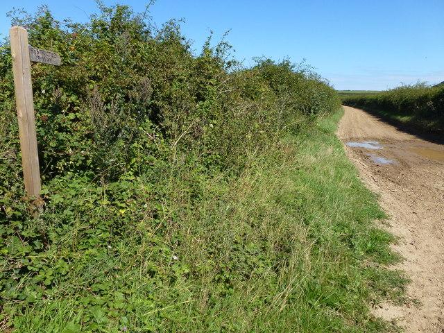 Restricted Byway near Burnham Thorpe