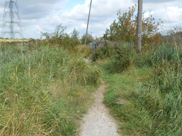 Footpath on Swanscombe Marshes (2)
