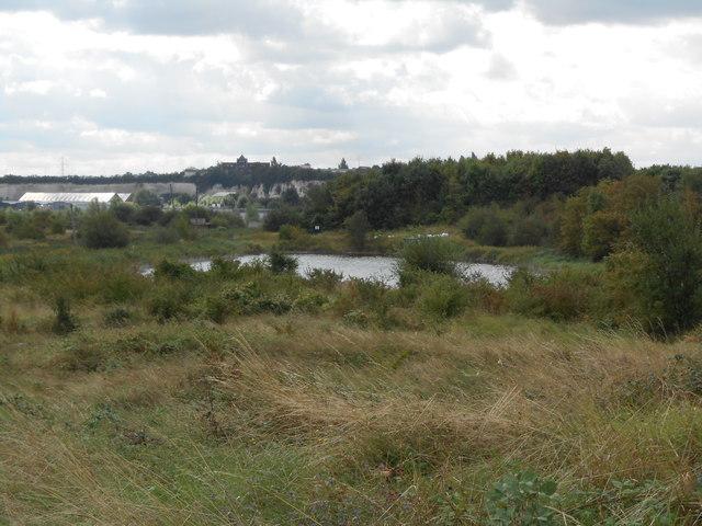 Swanscombe Marsh, looking towards Swanscombe