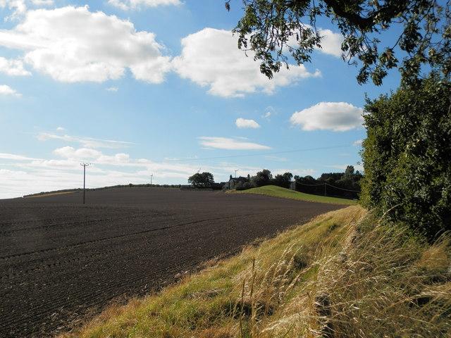 Farmland at Rossie