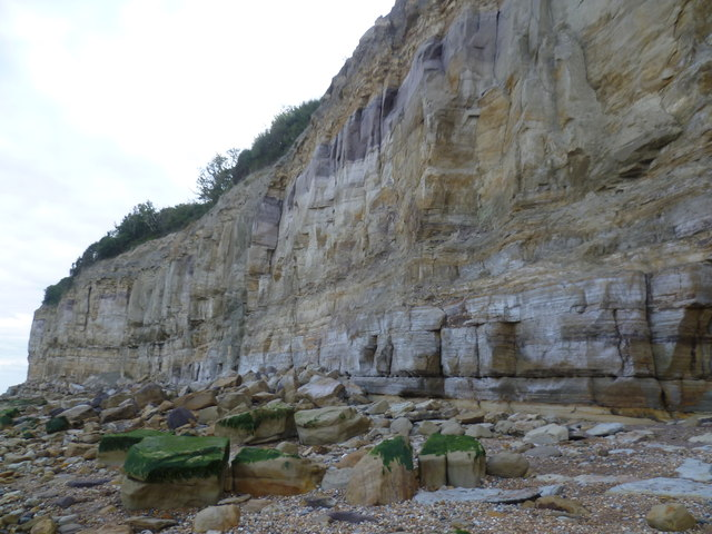 Cliffs at Fairlight