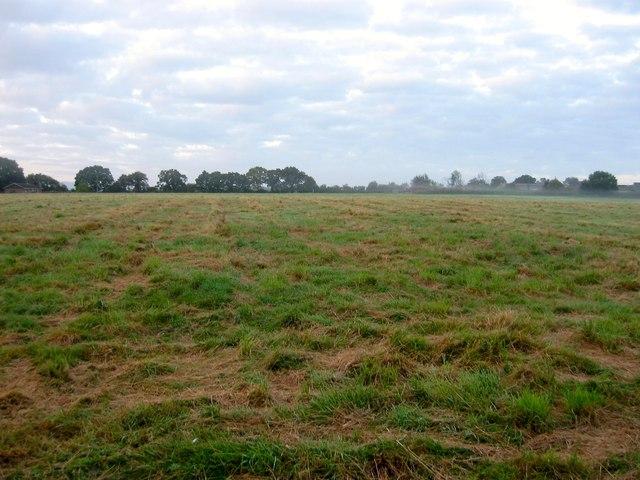 Barn Field (3)