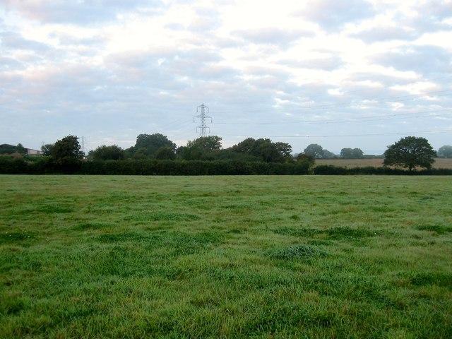 Hop Garden Field