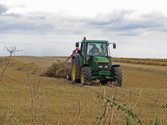 Turning Straw near Worlaby